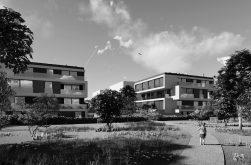 Lakeshore Living | Schwerin